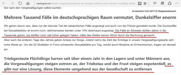 14.01.2017 rapefugees.net 01.jpg
